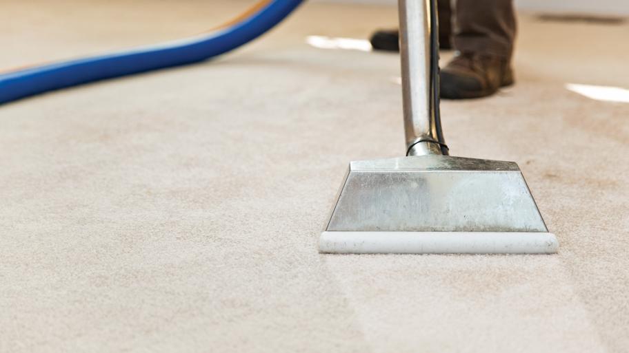 alt carpet cleaning